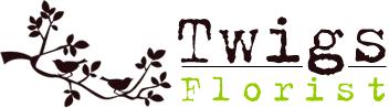loTwigs-go